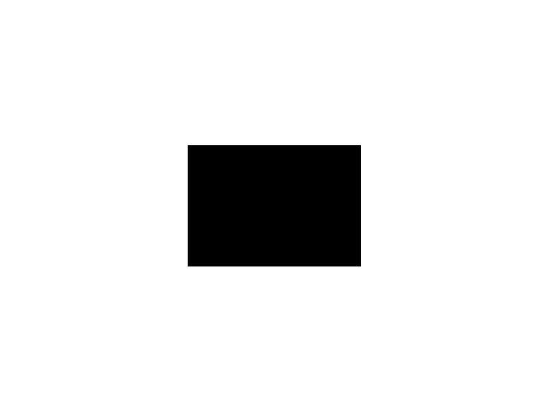 TarkkaPuunkaato
